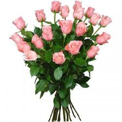Bunch of roses Pekoubo