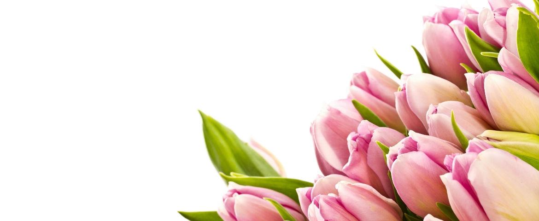 Choisissez les plus beaux bouquets