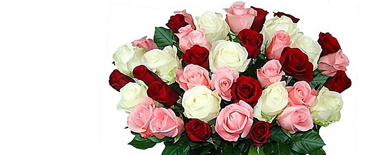 Des bottes de roses superbes
